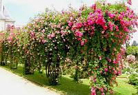 Опори для квітів і рослин Polyarm Ø 14 мм (2 метри)