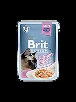 Консервы Brit Premium Cat Pouch для кошек с кусочками филе лосося в желе, 85 гр
