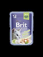 Консервы Brit Premium Cat Pouch для кошек с кусочками филе форели в желе, 85 гр