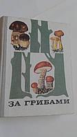 За грибами В.Тойбис