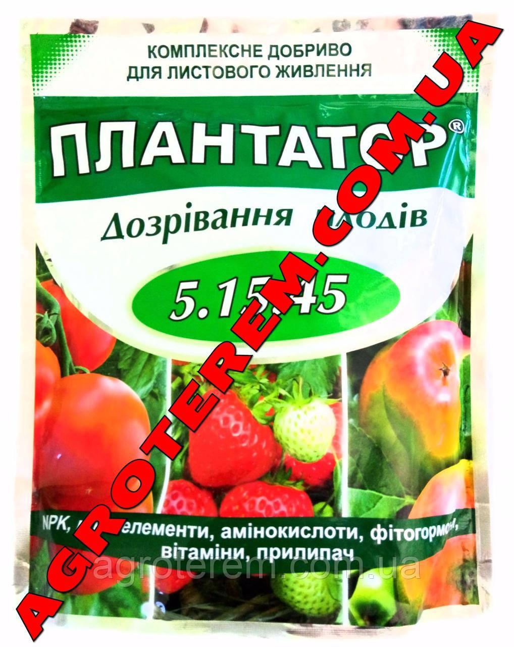 Плантатор 5.15.45 Созревание плодов 1 кг