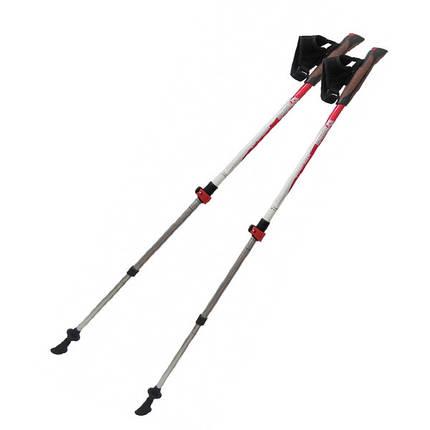 Палки для скандинавской ходьбы Tramp Compact TRR-004, фото 2