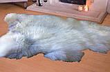 """Шкура овечья натуральная """"Ексклюзив"""", размер 120х70, фото 2"""