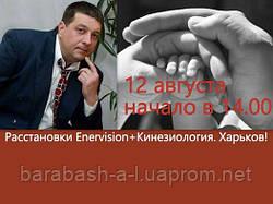 12 августа Харьков в 14.00 Расстановки ENERVISION с Андреем Барабашом