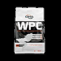 DNA WPC 900 g дна концентрат сывороточный протеин