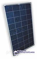 Сонячна батарея Perlight Solar PLM-100P/12