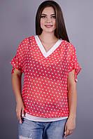 Дениз. Красивая блуза больших размеров. Розовый в белый горох.