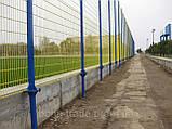 Зварні огородження для спортивних майданчиків, фото 4