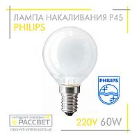 Лампа накаливания Philips шарик 60W E14 230V P45 FR (стандартная матовая) 650Lm