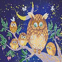 Схема для вышивки бисером на натуральном художественном холсте Ночные птицы