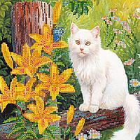 Схема для вышивки бисером на натуральном художественном холсте Белый кот