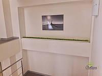 Стабилизированный мох ягель для фитостен под ключ  , фото 5
