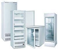Аренда барного холодильника в Киеве. Прокат маленького холодильника со стекляной прозрачной дверью