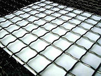 Сетка канилированная (мет.) 25х25/Ф4,0/1х2м