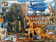 """Игра наст. большая """"Животные нашей планеты 2"""", в кор.38*29*5см, (10шт)"""