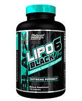 Жиросжигатель Lipo 6 Black Hers Nutrex 120 caps