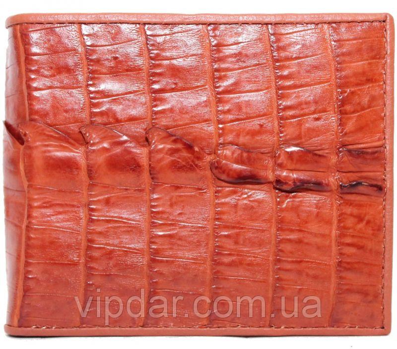 Кошелек из кожи крокодила / Genuine crocodile leather wallet - vipdar.com.ua в Киеве