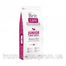 Сухой корм Брит Кеа Юниор (Brit Care Junior Large) с ягненком и рисом для молодых собак крупных пород,12 кг