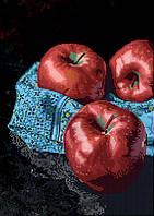 Схема для вышивки бисером POINT ART Яблоки, размер 30х42 см