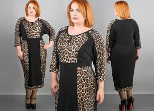 Жіночий одяг великих розмірів 52-64