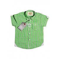 Рубашка зеленая детская