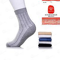 Носки мужские сетка Паук A9617 оптовый магазин носков (12 ед. в упаковке)