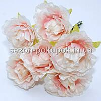Роза  пышная d=3,5-4см  (цена за букет из 6 шт). Цвет - БЕЛО-РОЗОВЫЙ