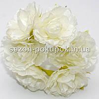 Роза  пышная d=3,5-4см  (цена за букет из 6 шт). Цвет - АЙВОРИ (молочный)