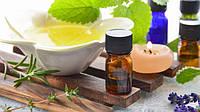 Масло чайного дерева – уникальное средство от многих проблем!