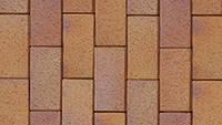 Клинкерная брусчатка АВС Herbstlaub-hell 200/100/52 мм (093561)