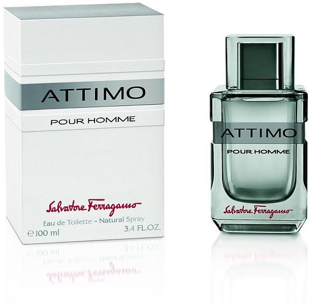 Salvatore Ferragamo Attimo Pour Homme туалетная вода 100 ml. (Сальваторе Феррагамо Аттимо Пур Хом)
