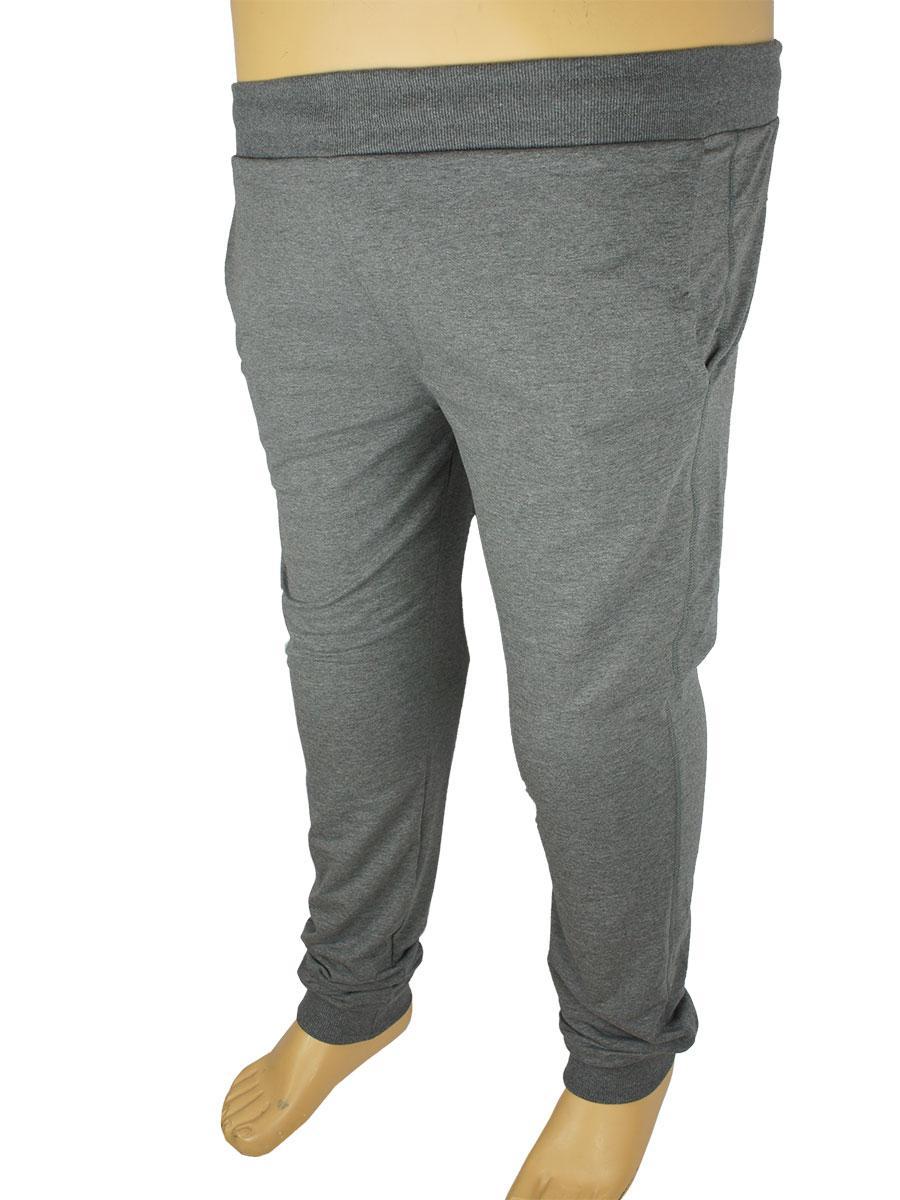 Чоловічі спортивні брюки Fabiani 5736 B сірого кольору великих розмірів