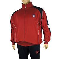 Чоловічий спортивний костюм Dekons 1817 B великого розміру в бордовому кольорі