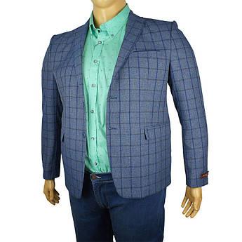 Чоловічий піджак Daniel Perry Jupiter синього кольору у великому розмірі