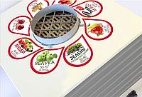 Электрическая сушилка для фруктов и овощей Профит Profit M ЭСП - 01 (7 лотков, 35л)