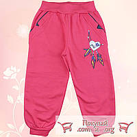 Коралловые штаны на манжете с начёсом для девочек Размеры: 104-110-116 см (5535-2)