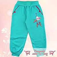Спортивные штаны с начёсом для девочек Размеры: 104-110-116 см (5535-5)