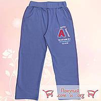 Трикотажные штаны с начёсом для мальчика Размеры: 7-8-9 лет (5536-1)