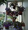 """Подставка для цветов на 20 чаш """"Юлия"""""""
