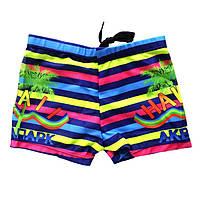 Детские плавки Hawai - №2404