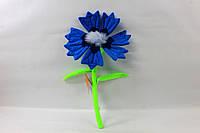 Квітка Волошка