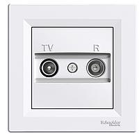Розетка ТВ - Радио (TV-R)  концевая Schneider Asfora белая