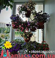 """Подставка для цветов """"Юлия"""" на 20 чаш"""