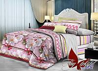 Комплект постельного белья R647 (TAG-359е) евро