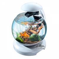 Аквариум Tetra Cascade Globe  белый 6,8 литров для петушка и золотой рыбки