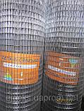 Сетка сварная 25х12,5х0,6, фото 3
