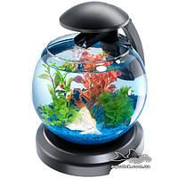 Аквариум Tetra Cascade Globe черный 6,8 литров для петушка и золотой рыбки