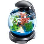Аквариум Tetra Cascade Globe для петушка и золотой рыбки  черный 6,8 литров