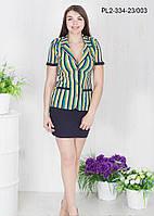 Жакет и юбка  оптом Белинда красивый, модный, фасон в размерах от 44 до 50