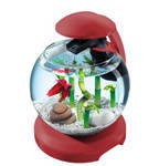 Аквариум Tetra Cascade Globe для петушка и золотой рыбки  бордовый 6,8 литров